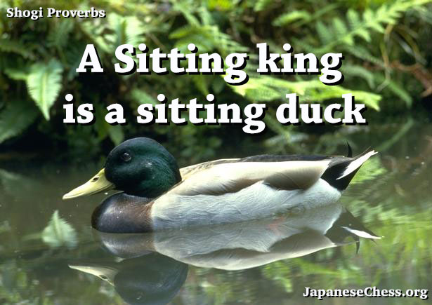 Sitting King (Shogi)